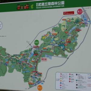 ♪ ダニエル 武蔵丘陵森林公園へ~(#^.^#)  ♪