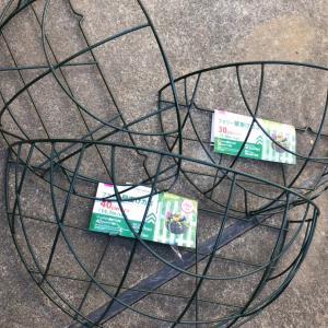 ダイソーで欠品のためリメイクしつつ、植え付ける!