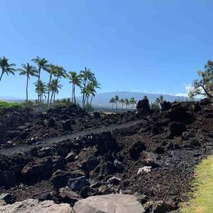 ハワイ島2020 ②マウナ・ケアの公園