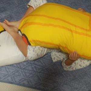 【43個目】抱き枕当選(*>∀<*)ノ