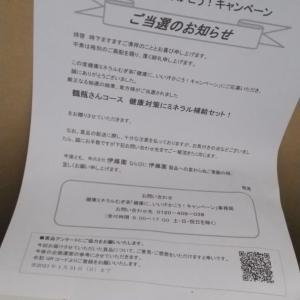 【1】伊藤園×麦茶