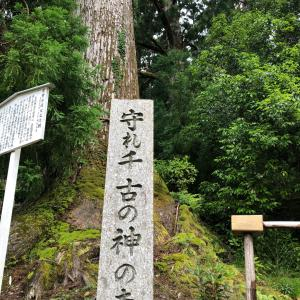 熊野にプチリトリート 1
