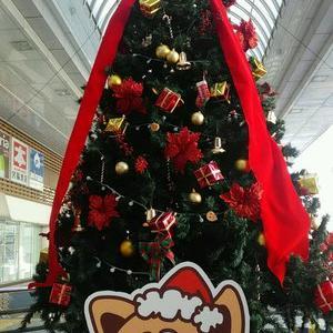クリスマスツリー(*^-^)