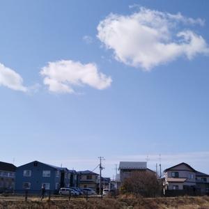 良いお天気♪