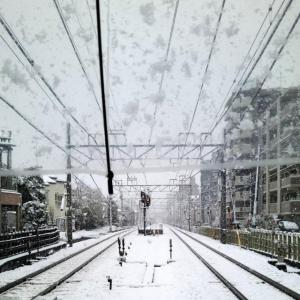 外出自粛の雪の日に