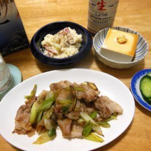 豚肉と葱の塩炒めとポテトサラダで晩酌