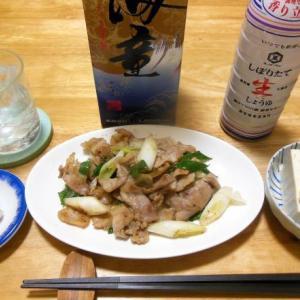 豚肉と葱炒めで晩酌