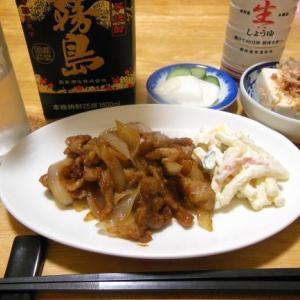 豚の生姜焼きで晩酌