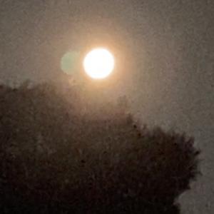 水瓶座の満月はひらめきと若返り♪
