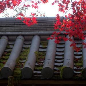 京都 槇尾山 西明寺