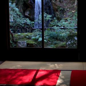 冬のある日 南禅寺方丈庭園