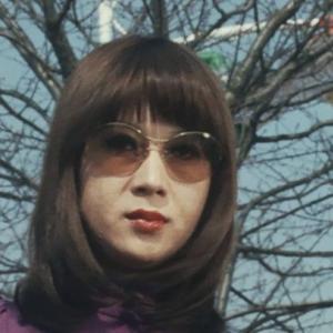 仮面ライダーV3に登場した女優さんを貼るスレ20
