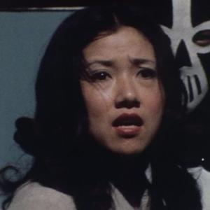 仮面ライダーV3に登場した女優さんを貼るスレ21
