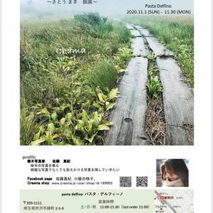 ☆ 11月1日(日)より佐藤真紀さんの 写真展をパスタデルフィーノにて開催致します。
