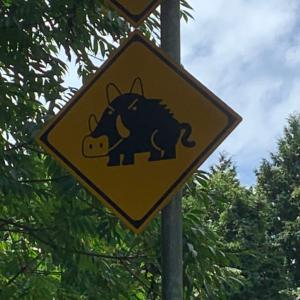 なんて標識だ