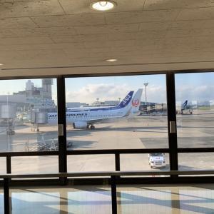 伊丹空港も綺麗になってるなぁ