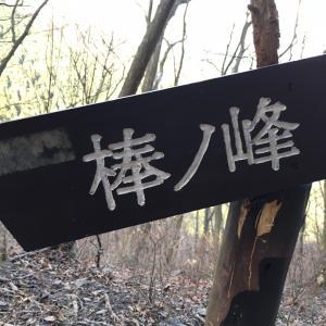 お久しぶりの名栗!棒ノ折山へ!