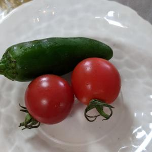 シニアLIFEの簡単なご飯①