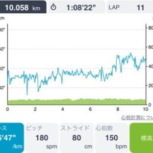 今日も10km
