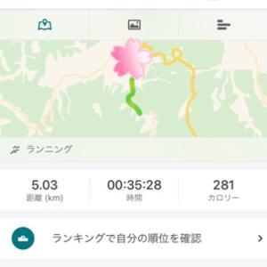 走り初め 5km