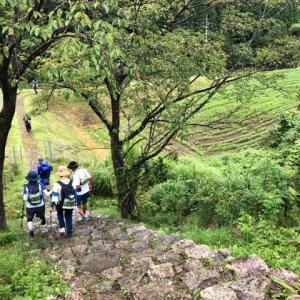 萩往還33km③明木から12.3km地点