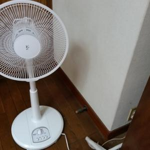 実家の扇風機購入