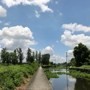 バンコク運河散歩 #71