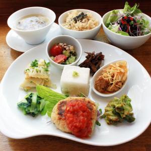 ランチメニュー(2019/4/09〜4/21)豆腐とナッツのハンバーグTofu & Nuts Hamburger steak