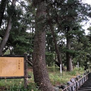 静岡の旅 ~三保の松原~