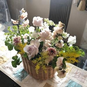 アンコールレッスンは春の花