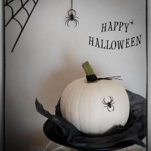 白いかぼちゃ