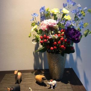 今週のお花と猫といえば