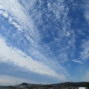 箱根にお泊り(1)