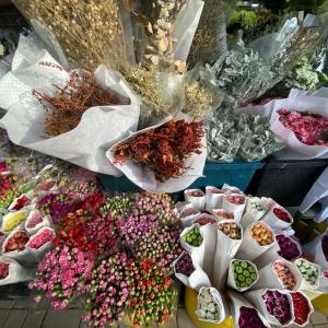 おうちでハーブを育てたい!花市場でびっくりした香港人の行動!