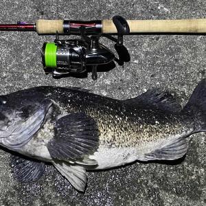そろそろ釣りも終了か...真冬日が続きそう