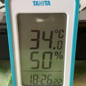 宗谷地方に史上最高熱波来襲中