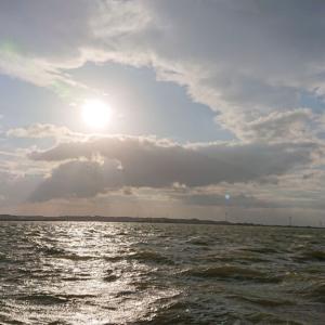 利根川下流域釣行0219-01