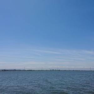 利根川下流域釣行0802-02
