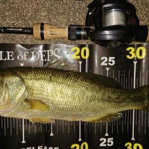 利根川下流域釣行1091-04