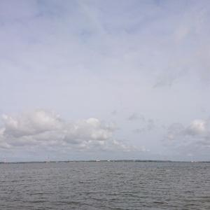 利根川下流域釣行朝練0514-03