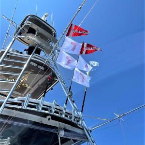 下田沖 中日本マハロ艇 6タグ&リリース