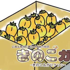 【きのこガリ】西条柿の収穫③