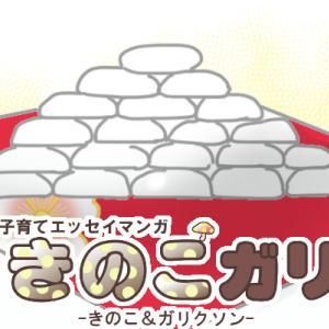 【きのこガリ】一升餅