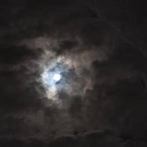 中秋の名月・撮りました~