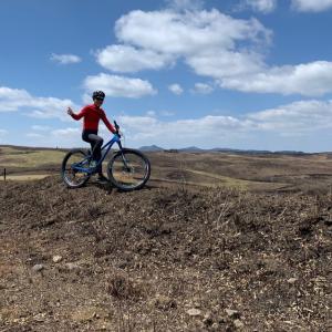 西小園牧野の調査
