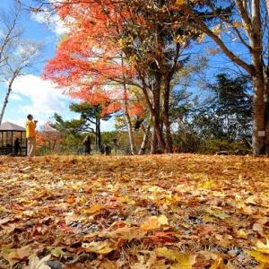 GOTOトラベルで軽井沢へ。