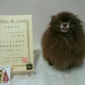 愛玩動物飼養管理士資格認定証