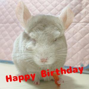 Happy Birthday クロワッサン ♪