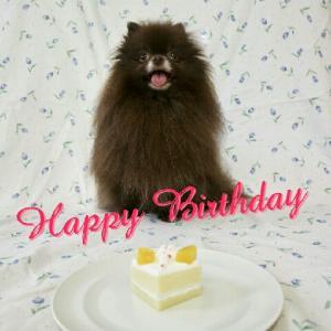 Happy Birthday チュプ ♪