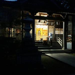 岡田川の蛍(画像は、わけわかりません)